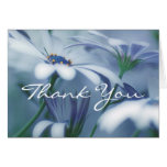 Thank You Card (Template) Daisy Floral Macro Photo Greeting Card