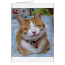 Thank You Card with Happy Cat