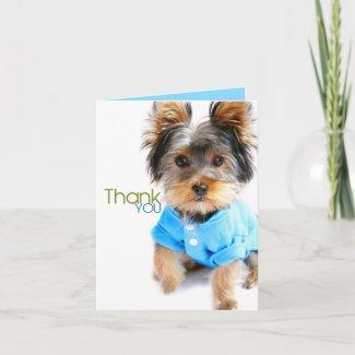 Thank You Card_Yorkie card