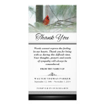Thank You Cardinal Bird Words Cannot Express Card