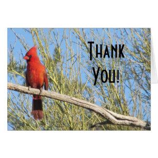 Thank you! Cardinal Card