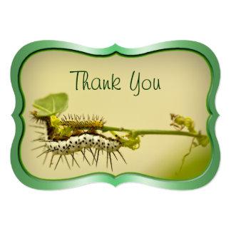 """""""Thank You"""" - Caterpillar Closeup Nature Photo . Card"""