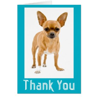 Thank You Chihuahua Puppy Dog Blank Notecard Stationery Note Card