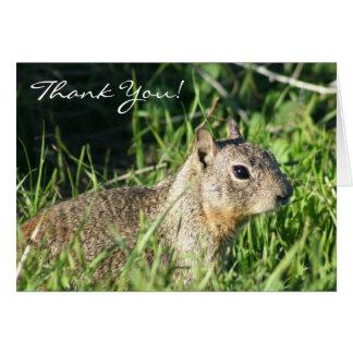 Thank You Chipmunk Greeting card