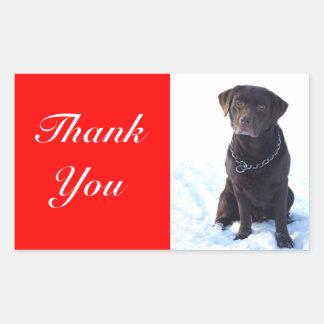 Thank You Chocolate Labrador Retriever Sticker
