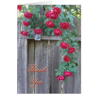 Thank You, Climbing Roses Greeting Card