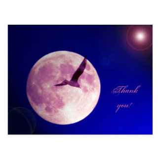 Thank you - collage with full moon and bird postcard