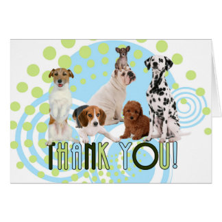 Thank You Cute Dogs in Blue and Green Blank Card