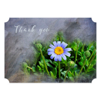 Thank You - Daisy Bloom - Customize Card