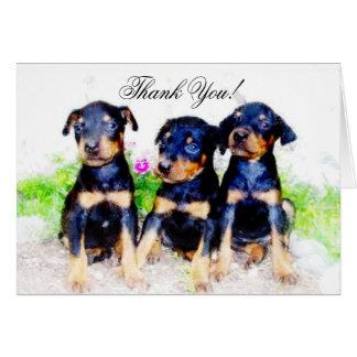 Thank You Doberman Pinscher pups greeting card