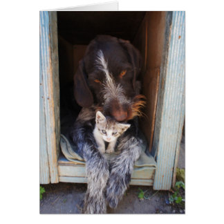 Thank-You Dog and Kitten Greeting Card