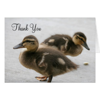 Thank You, Ducklings Card