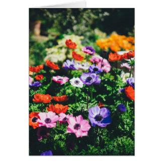 Thank-You Flower Garden