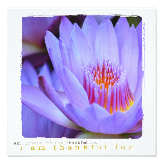 Thank You flower photography flat cards