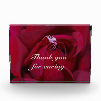 Thank you for caring award