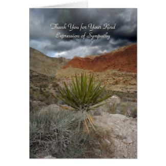 Thank You for Sympathy, Mountain Storm with Yucca Greeting Cards