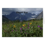 Thank You For Sympathy Note Mountain Wildflowers Stationery Note Card