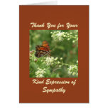 Thank You For Sympathy, Orange Butterfly Greeting Cards