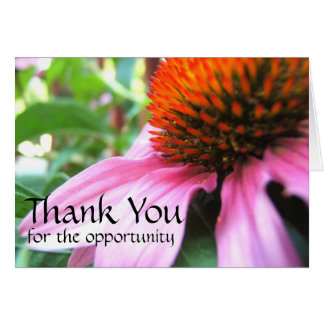 Thank You for the Opportunity, Purple Coneflower Stationery Note Card