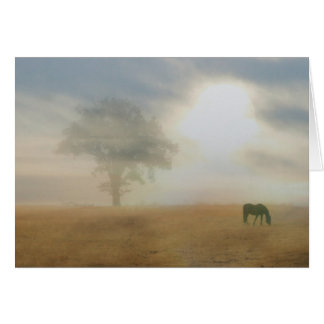 Thank you for your sympathy horse and sun card greeting card