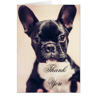 Thank You French Bulldog dog greeting card