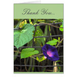 THANK YOU FRIENDSHIP NOTE CARD