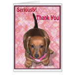 Thank You from A little Dachshund Puppy Greeting Card