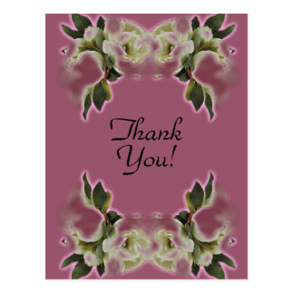 Thank You From the Bride Post Cards