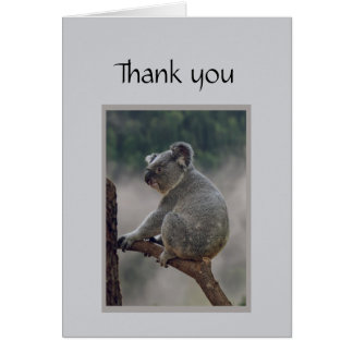 Thank you Fun Koala Bear Go out on a limb for me. Card