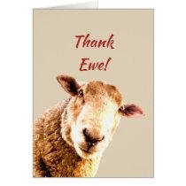 Thank You Funny Sheep Animal Humor Card