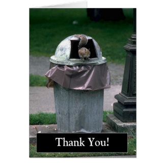 Thank You Funny Squirrel Card