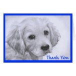 Thank  You Golden Retriever Puppy Drawing  Card