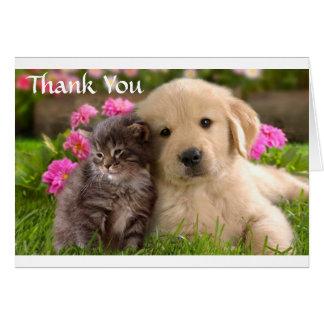 Thank  You Golden Retriever Puppy & Kitten  Card