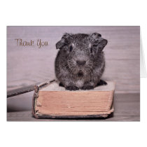 Thank You Guinea Pig Sat on a Book