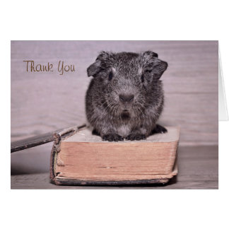Thank You Guinea Pig Sat on a Book Card