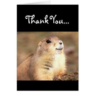 Thank You Happy Prairie dog greeting card
