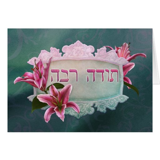 Thank You in Hebrew ~Todah Rabah ~ Stargazer Lily Greeting Card