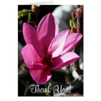 Thank You Japanese Magnolia flower greeting card