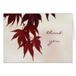 Thank You - Japanese Maple Leaves Greeting Card