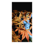 Thank you - Japanese maple - Photo Card