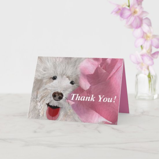 Thank You Labradoodle and Rose  Card