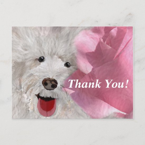 Thank You Labradoodle and Rose  Postcard