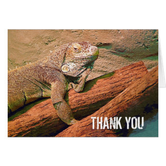 Thank You  - Lazy Lizard Greeting Card