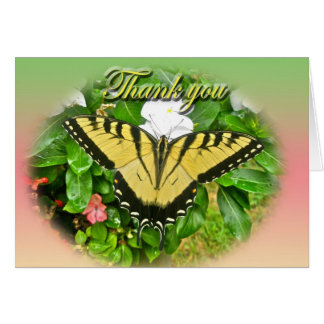 Thank You Male Tiger Swallowtail Butterfly Items Card