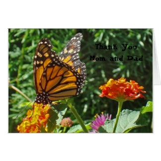 Thank You Mom and Dad Monarch Butterfly College Card