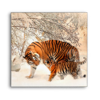 Thank you Mum Tiger and Cub Envelope