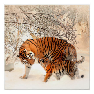 Thank you Mum Tiger and Cub Poster