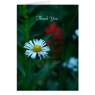 Thank You Note Card, White Daisy, Blank Inside Card
