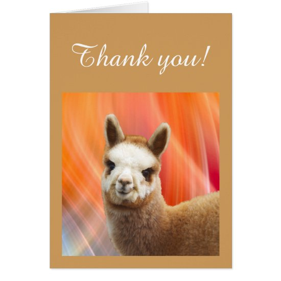 Thank You Note Cards Alpaca Rossi