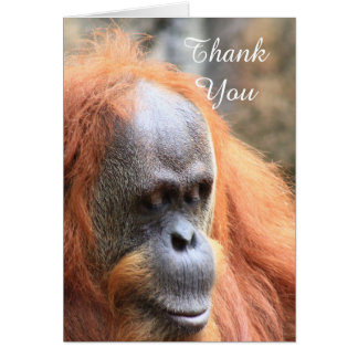 Thank You Orangutan Greeting Card